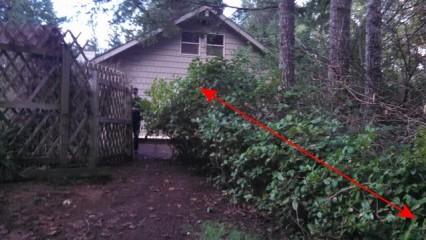 1 Backyard Before