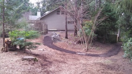 2 Backyard After