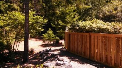 IMG_679_New fence