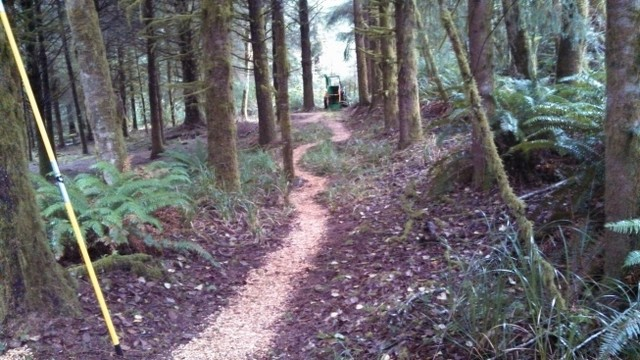 Suc_Trail_Looking_Frm_DrWay